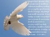 Drogie dzieci! Również dziś wzywam was do modlitwy. Odnówcie modlitwę osobistą, a w szczególny sposób proście Ducha Świętego, aby pomógł wam modlić się sercem...